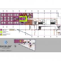 skalar_1